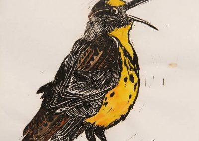 Marsha Schuld - Western Meadowlark