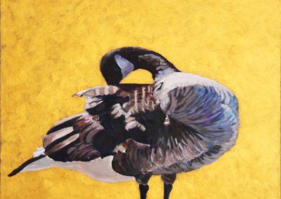 Marsha Schuld - Canada Goose