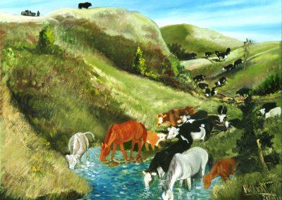 Bill Philpott Checking the Herd
