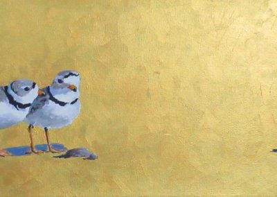Marsha Schuld - Piping Plovers